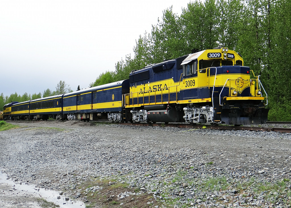 Telkeetna train