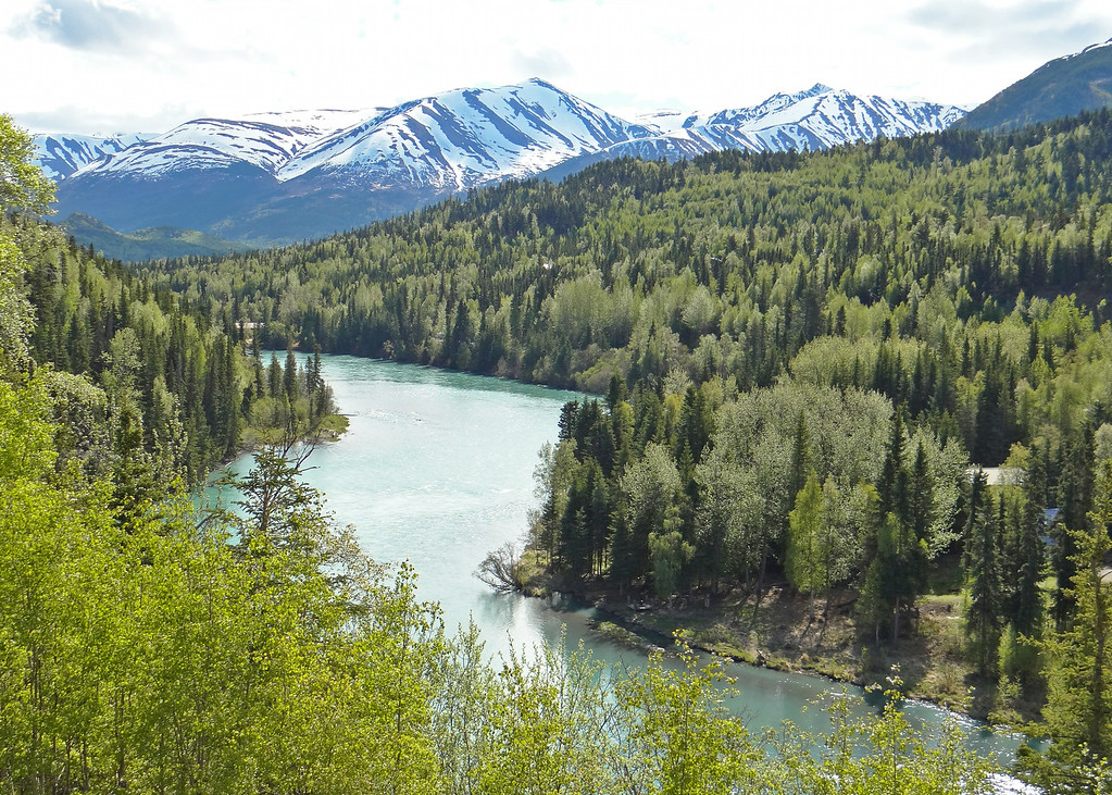 Kenai River from Kenai Princess Lodge