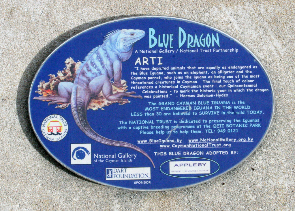 Sign about Blue Dragon