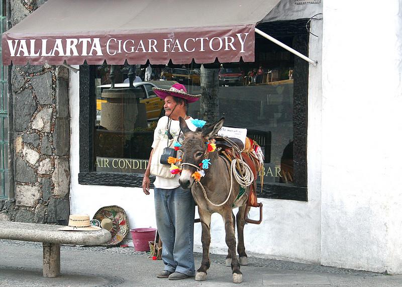 Man poising with his donkey