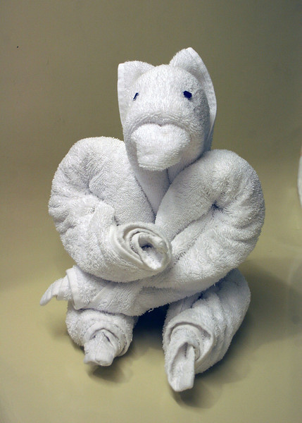 One of our towel animals; I am not sure what it is.