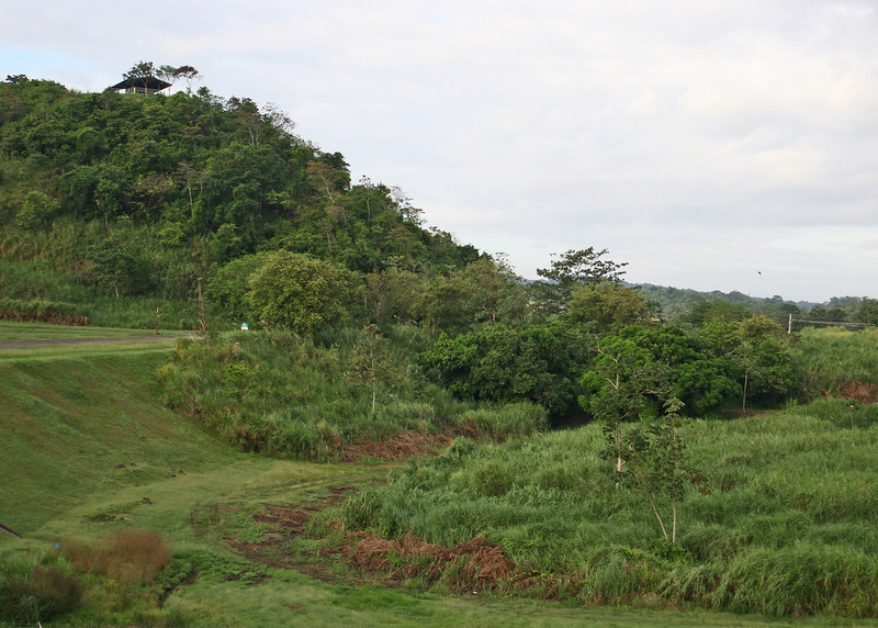 Countryside around the Miraflores Locks