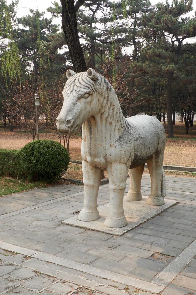 Standing Mongolian Horse.