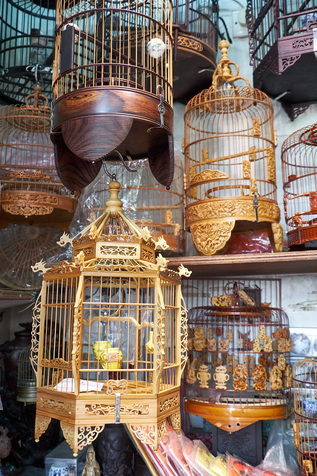 The cages can be very ornate.