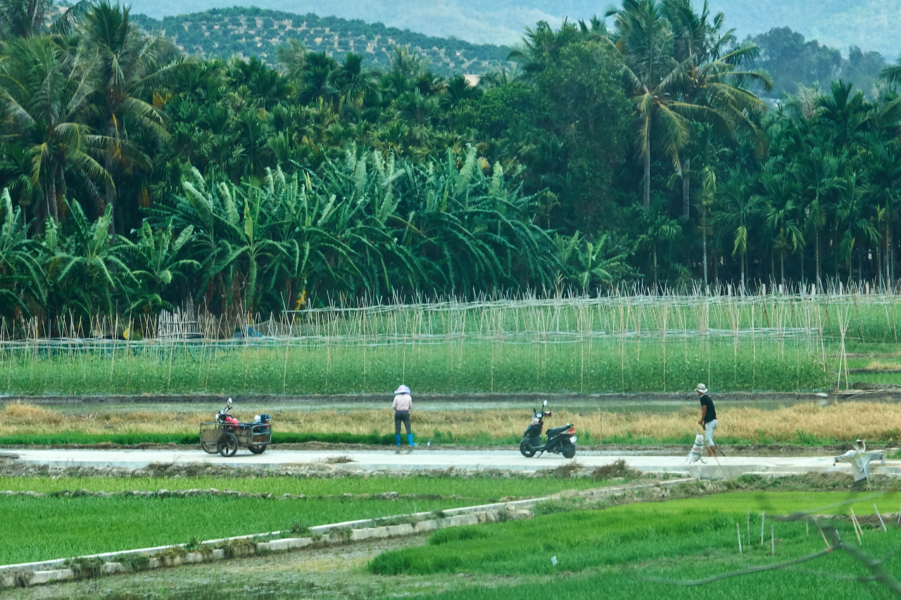 Farmers seen from bus on highway going to Nanshon Cultural Resort.
