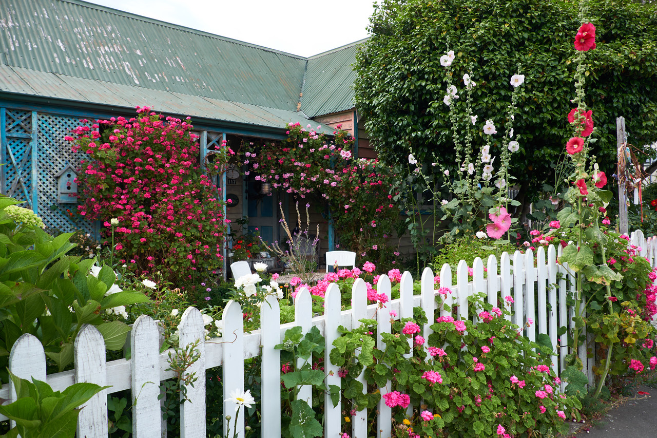 Mrs. Munn's Cottage. The cottages are built in the English style with wonerful front gardens.