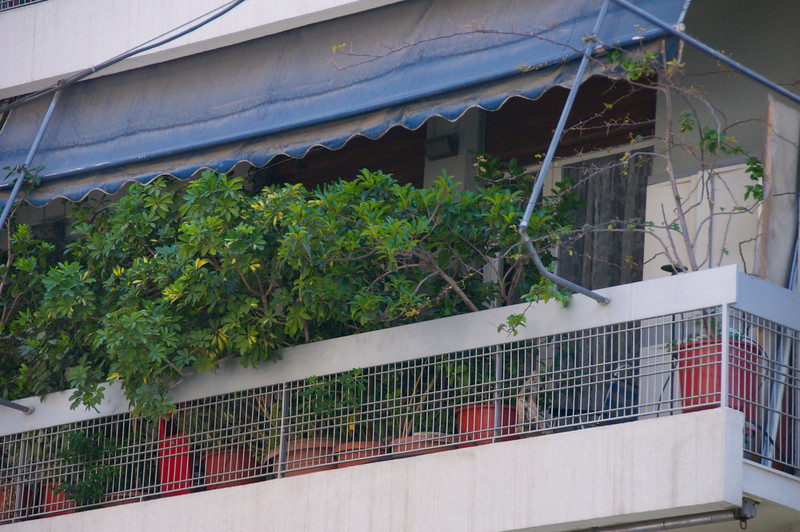 Typical Apartment Balcony