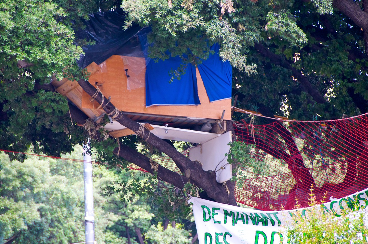 Protesters Sleep in Tree Houses