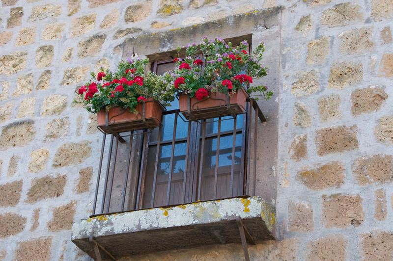 Typical Window Flower Pots