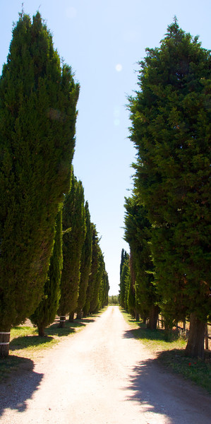 Casale Bonaparte Drive