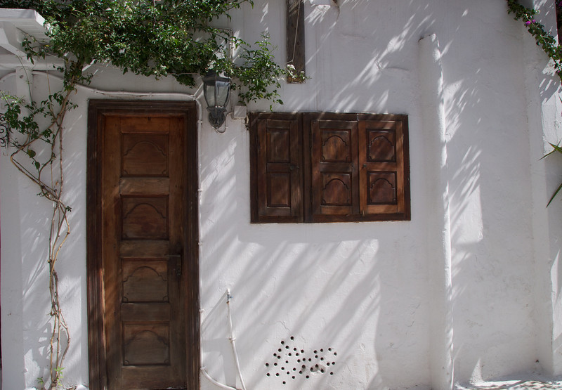 Beautiful Wooden Carved Door and Window Shutters