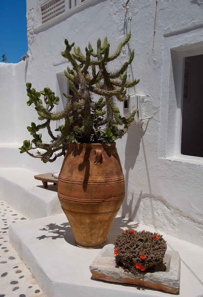 Along the Streets of Oia