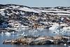 Arriving Ilulissat, Greenland, pop. 4900