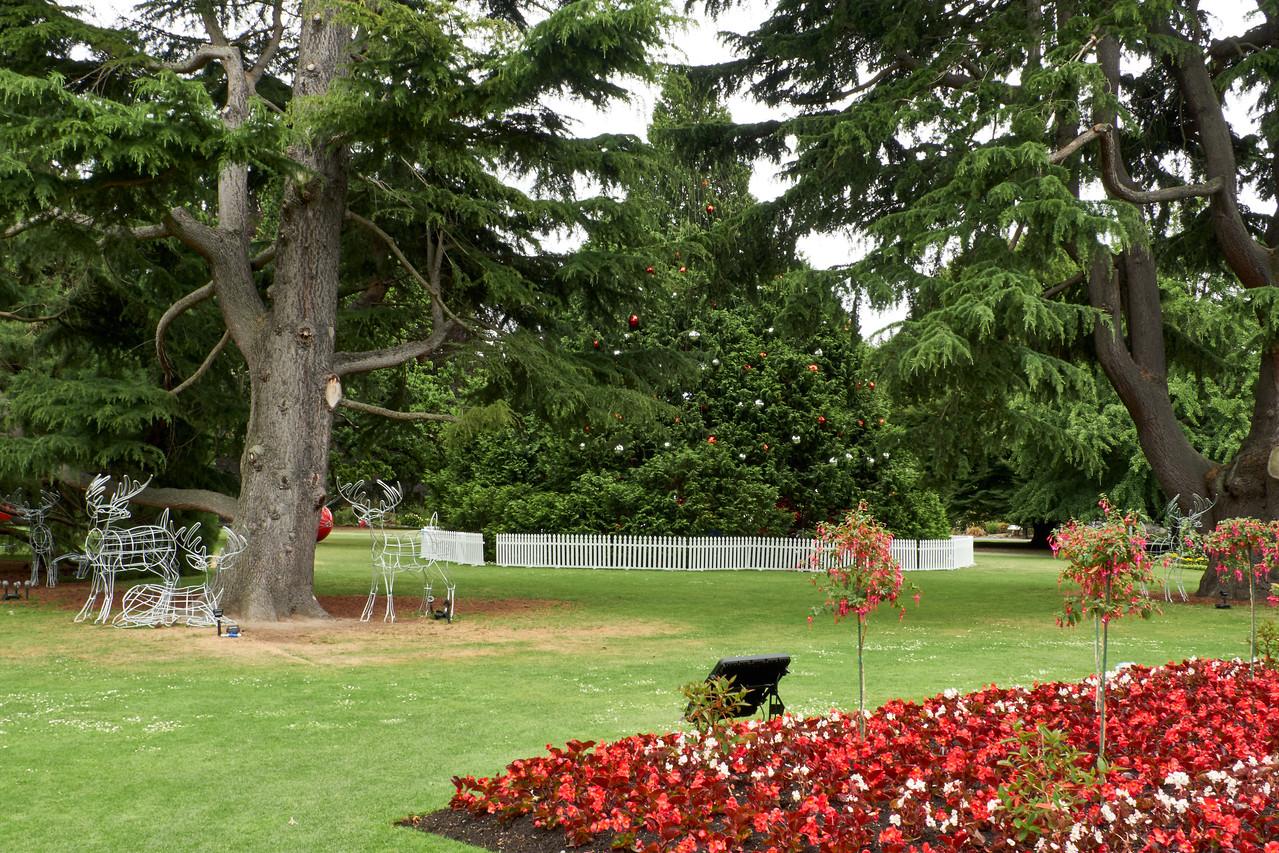 Christmas at the Botanical Garden.