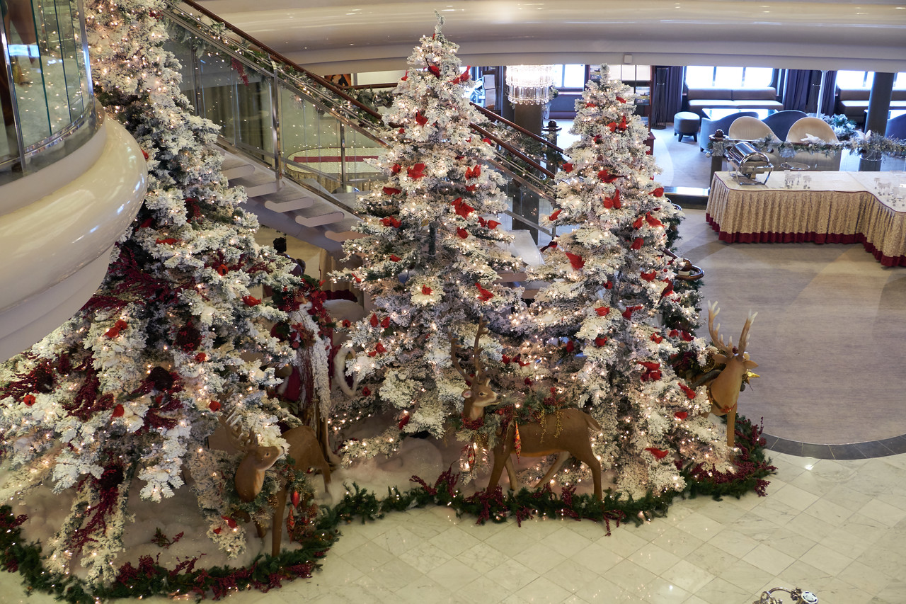 Trees in the reception area.