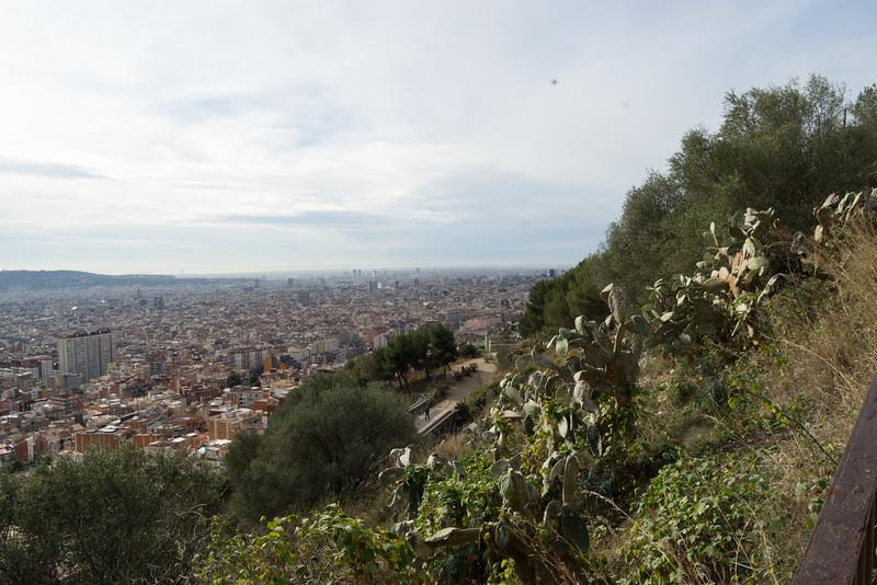 Albert Barcelona-98