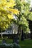 Trondheim fall colors