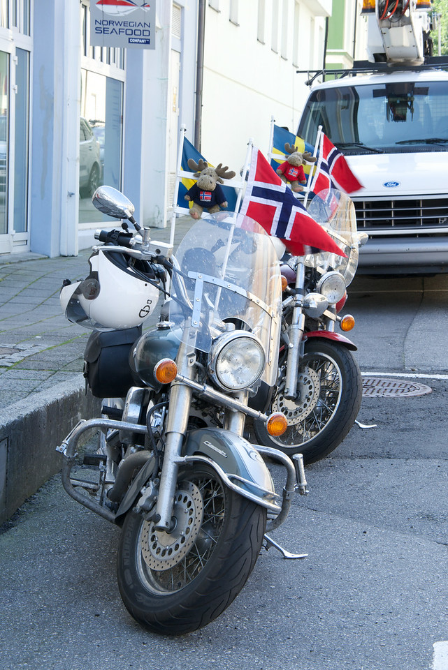 Norwegian and Swedish Flags and Moose