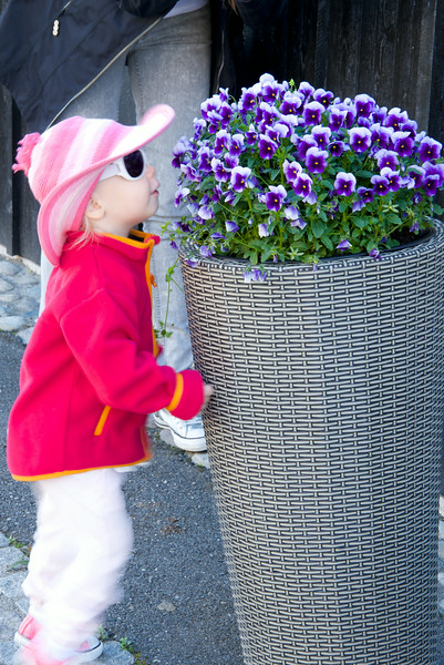 Isabella Stopped To Smell All The Flowers