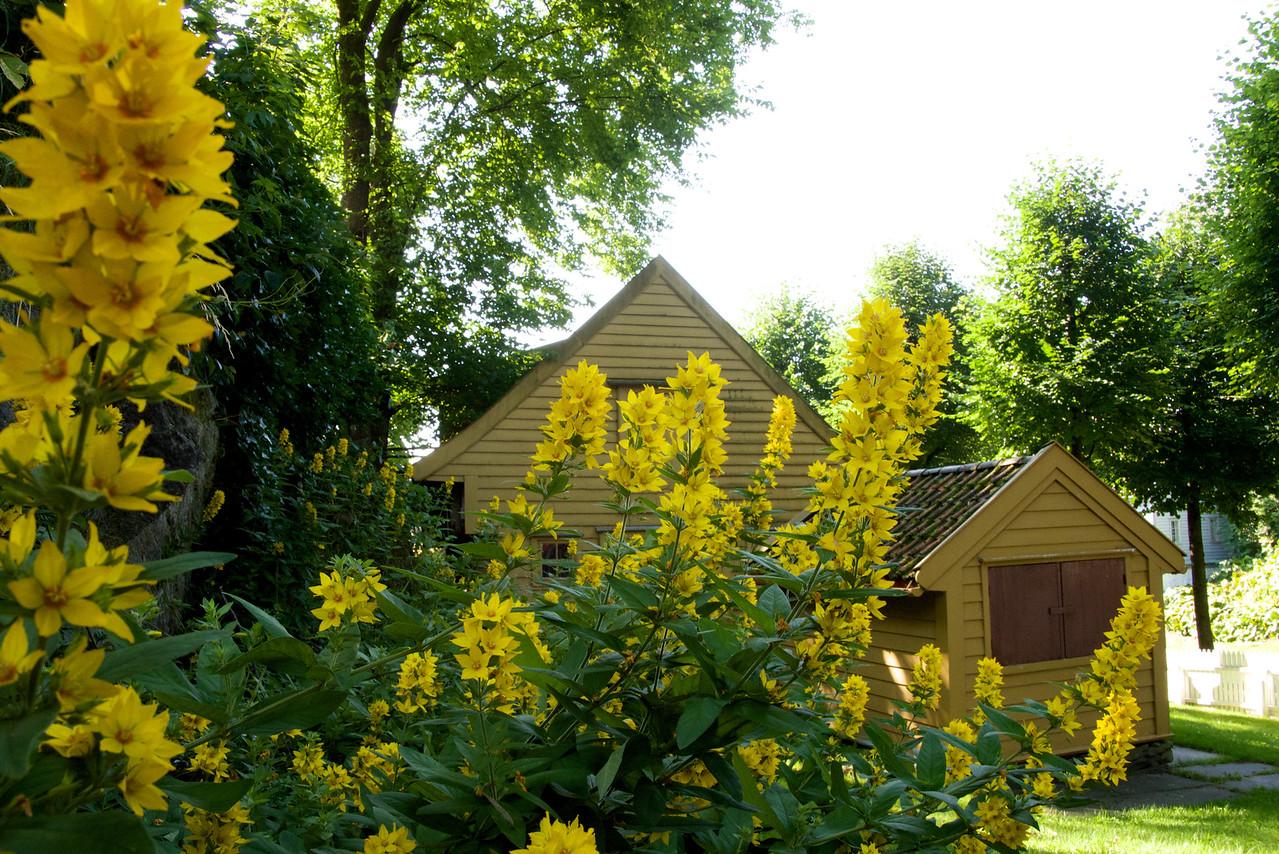 Yellow ocher house