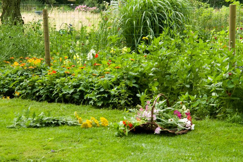 Garden on the Blixen grounds
