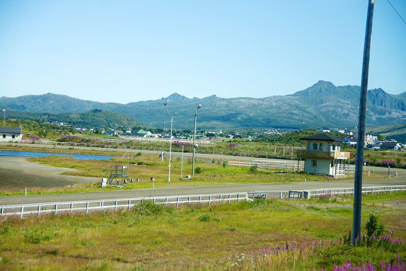Lofoten horse track