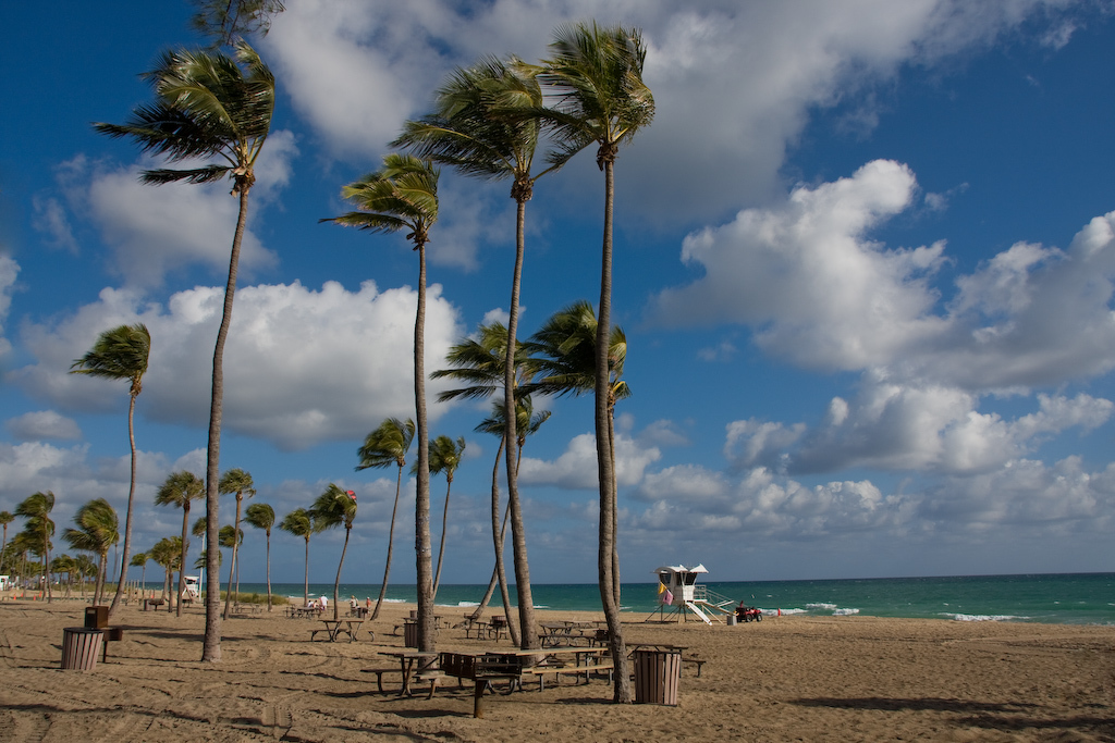 Fort Lauderdale Beach, Florida:<br /> A breezy, deserted beach is my idea of a relaxing place.