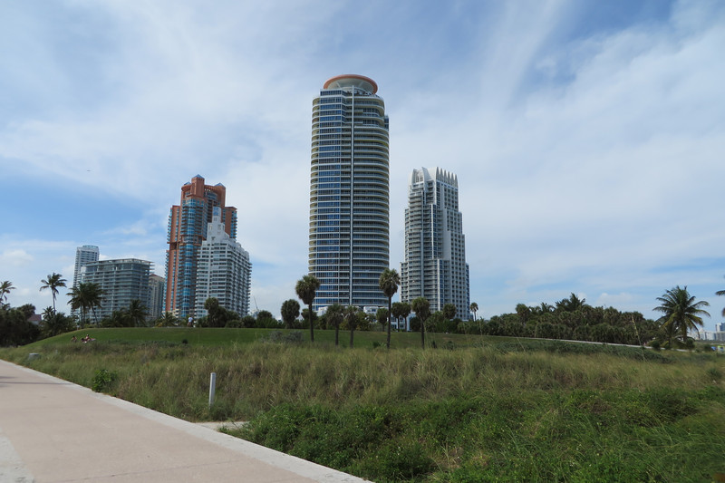 View of some high rise condos from the park.