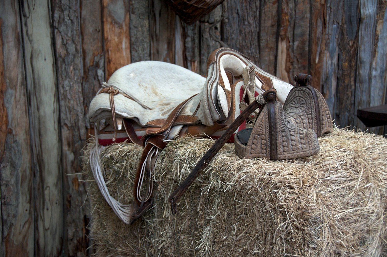 Stirrups and Saddle2011-01-1113-15-30