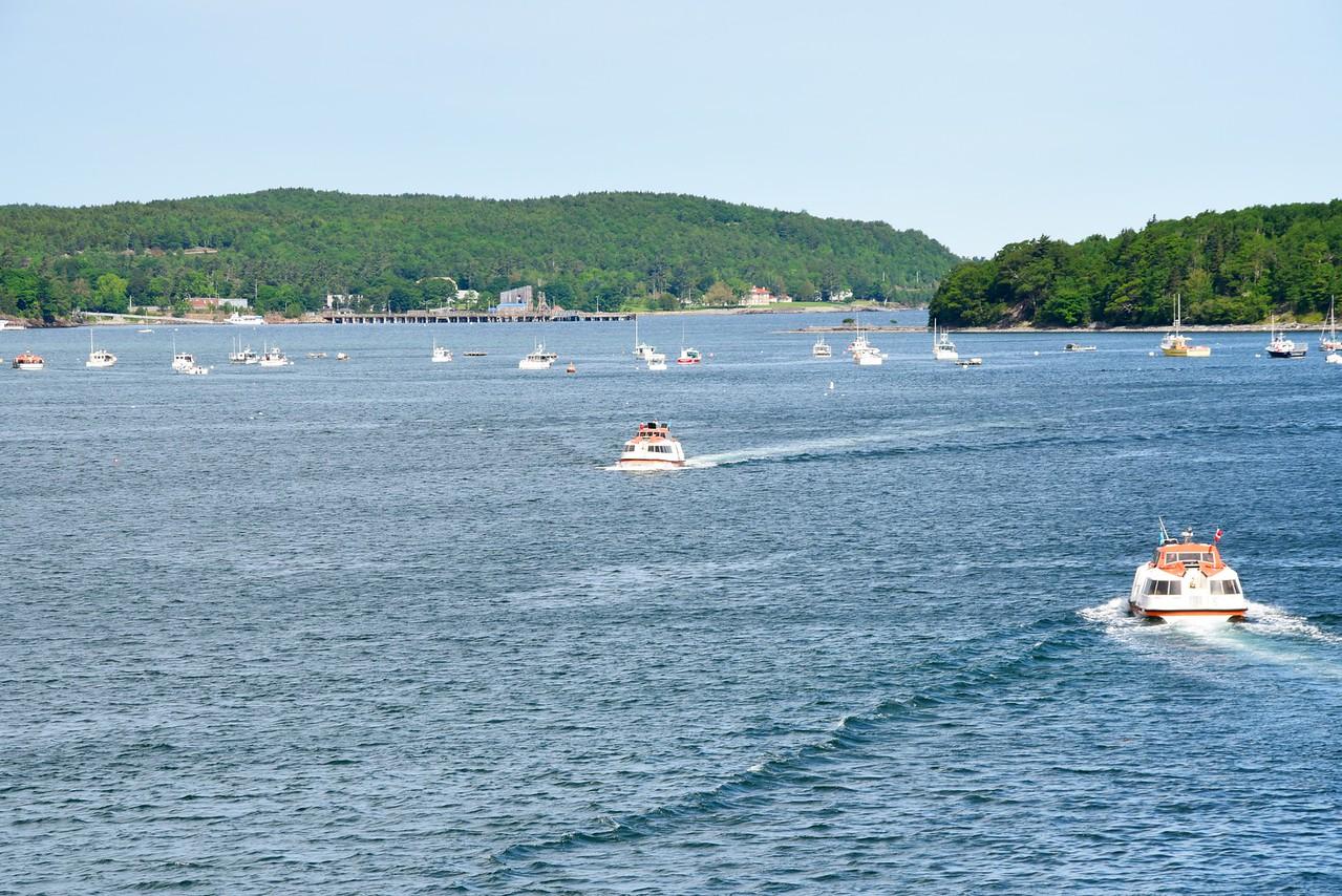 Tendering into Bar Harbor
