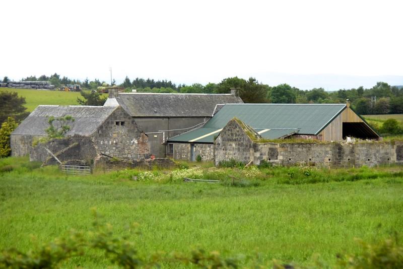 Sheep Farm  (From Bus)