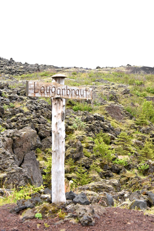 Road Sign in The Lava Fields