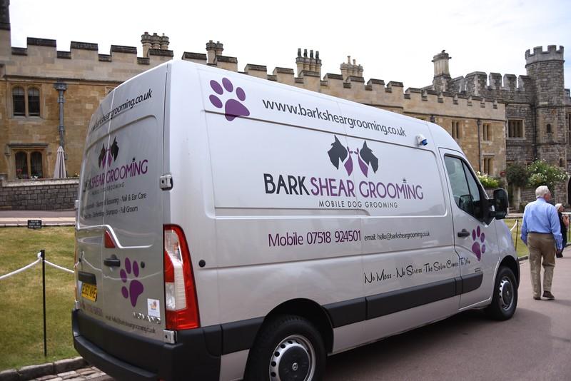 Wonder If The Queen's Corgies Got Groomed?