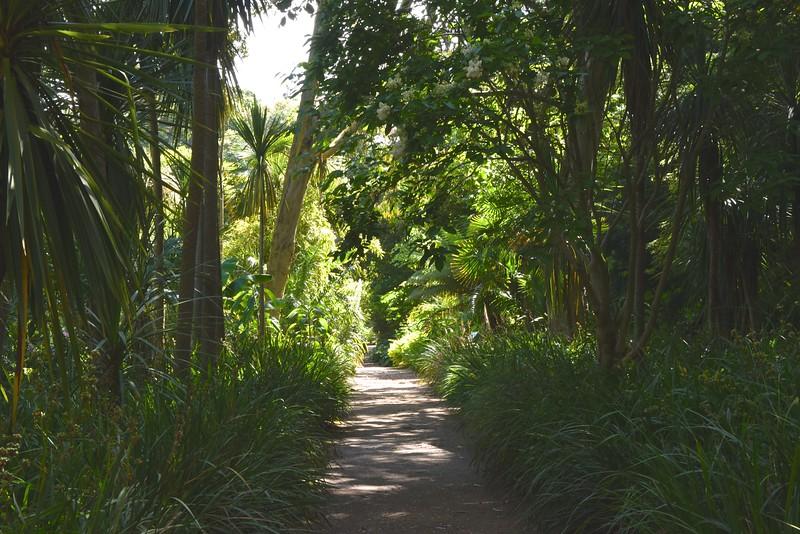 Abbotsbury Garden Path