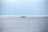 ALGRIE PZ199 SW UK Coast English Channel PDM 18-12-2016 13-26-57