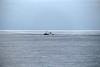 ALGRIE PZ199 SW UK Coast English Channel PDM 18-12-2016 13-26-34