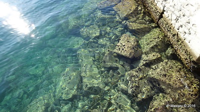 Clear Water Sea Urchins Kavala PDM 02-11-2016 10-08-11