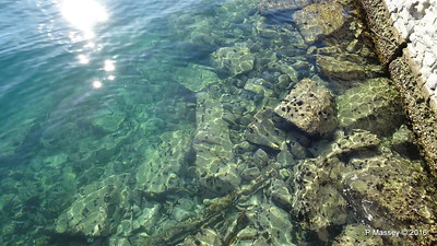 Clear Water Sea Urchins Kavala PDM 02-11-2016 10-08-17