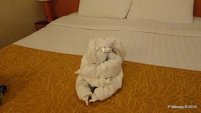 Towel Elephant Cabin 2443 COSTA FORTUNA PDM 21-03-2016 13-25-19