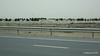 Sheikh Khalifa Hwy E12 Al Jubail Island Abu Dhabi PDM 23-03-2016 10-40-50