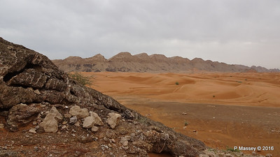 Jabel Maleihah Fossil Rock Outcrop Fujairah PDM 22-03-2016 13-20-15