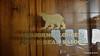 Polar Bear Saloon Fwd Saloon Deck LOFOTEN 28-07-2016 08-22-50