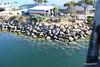 Long Beach Cruise Terminal Isolation Ward Port Porthole B-Deck Aft 19-04-2017 16-55-04