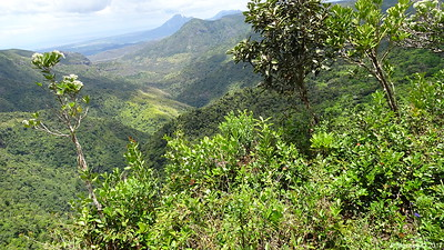 Black River Gorges Viewpoint Mauritius 01-12-2017 11-51-53