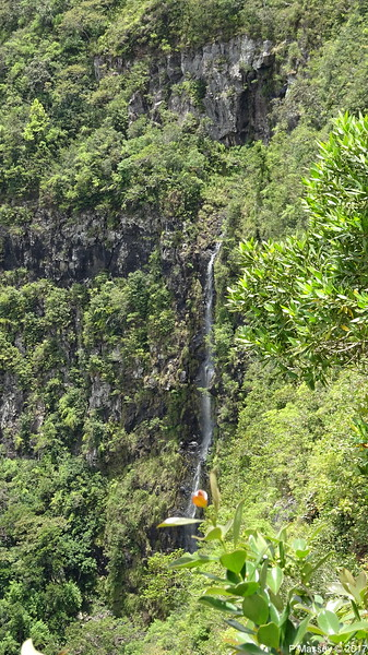 Waterfall Black River Gorges Viewpoint Mauritius 01-12-2017 11-50-37