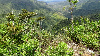 Black River Gorges Viewpoint Mauritius 01-12-2017 11-52-07