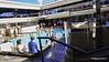 Bamboo Covered Pool Deck 15 Fwd MSC MERAVIGLIA PDM 05-07-2017 16-01-12