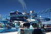 Polar Aquapark Water Slides Himalayan Bridge Deck 19 aft MSC MERAVIGLIA PDM 06-07-2017 08-35-00
