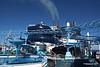 Polar Aquapark Water Slides Himalayan Bridge Deck 19 aft MSC MERAVIGLIA PDM 06-07-2017 08-35-06