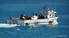 MAREBLU Fisheries Support Valletta PDM 05-07-2017 16-08-57
